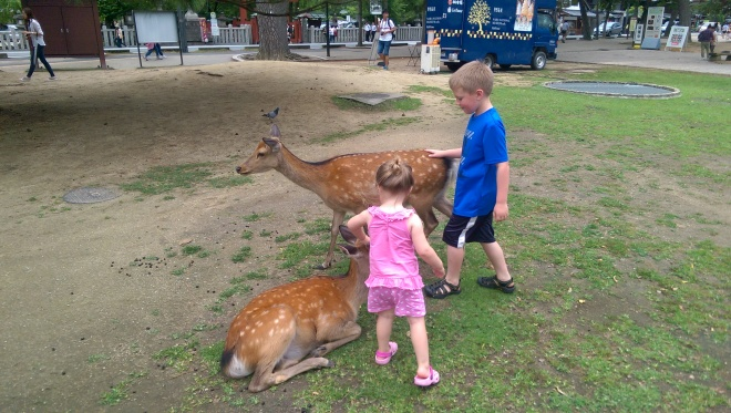 Just petting some deer.